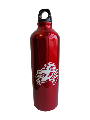 Aluminum Water Bottle with college mascot