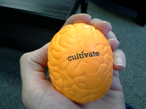 Cultivate Communications Brain Stress Toy