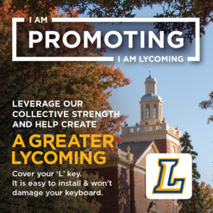 Lycoming 3x3 Keyboard Sticker